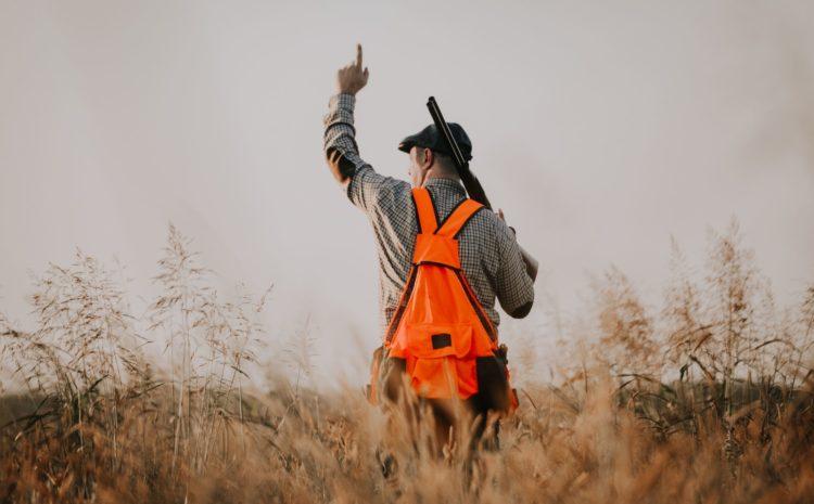 Przyspieszamy prace nad poprawą bezpieczeństwa na polowaniu