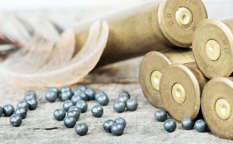 Rozporządzenie KE w sprawie zakazu używania amunicji śrutowej ołowianej na terenach podmokłych