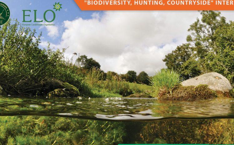 Weź udział w spotkaniu zespołu Parlamentu Europejskiego ds. różnorodności biologicznej, łowiectwa i terenów wiejskich